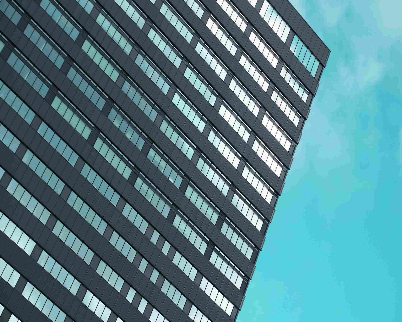 portfolio_15-1280x1024.jpg